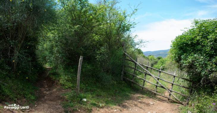Riserva Naturale Monterano sentieri
