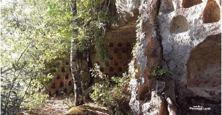 I colombari nell'insediamento rupestre di Vitozza