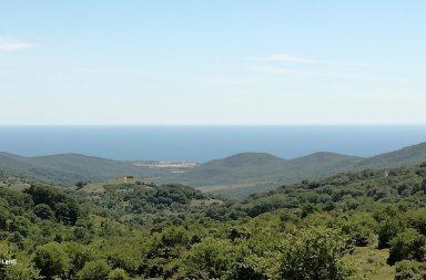 Vista sul mar Tirreno dal monte della Tolfaccia