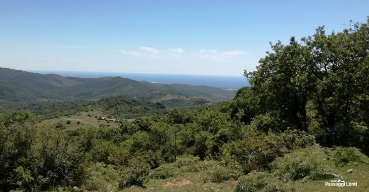 Panorama sul mare dal trekking della Tolfaccia