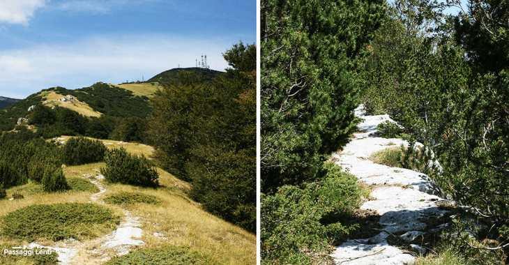 Trekking sulla Maiella, due sequenze del percorso da Pennapiedimonte al Rifugio Pomilio