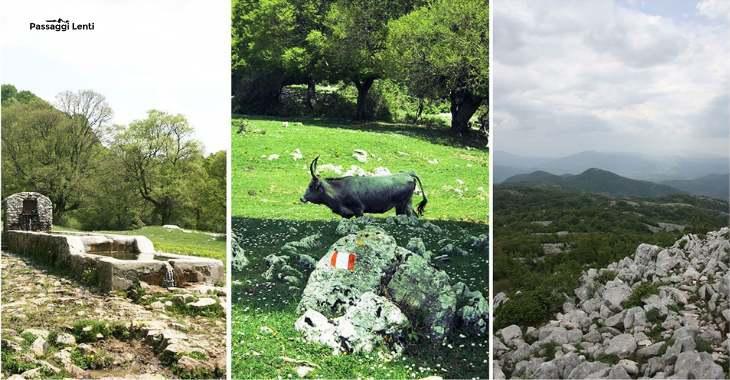 Escursione al Monte Gennaro
