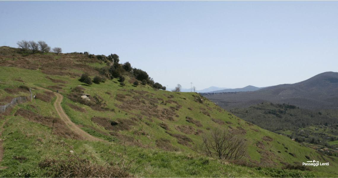 Escursione ai Castelli Romani: parco archeologico di Tuscolo