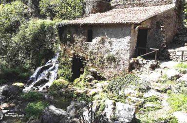 Grotte del Bussento. L'Oasi del WWF di Morigerati in Cilento