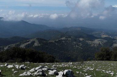 Escursione sul Monte Pellecchia