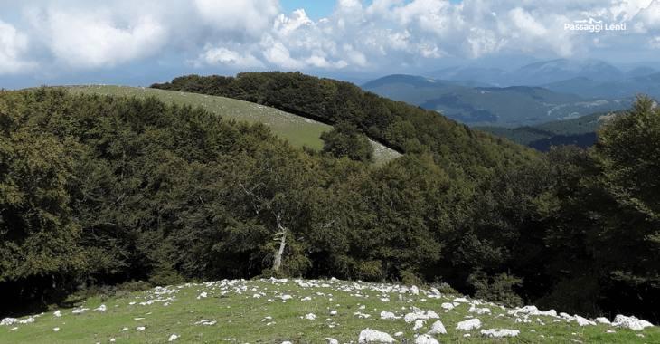 Monte Pellecchia, la vetta più alta dei Lucretili