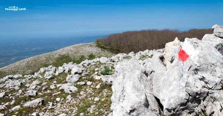 Escursione a Monte Lupone partendo da Segni