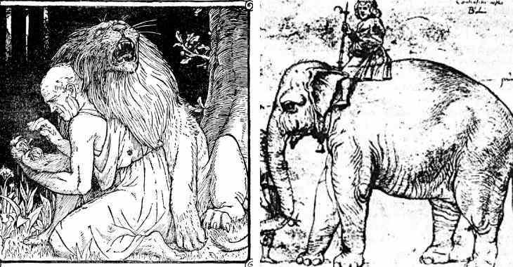 Leone di Androcolo e elefante di Annone