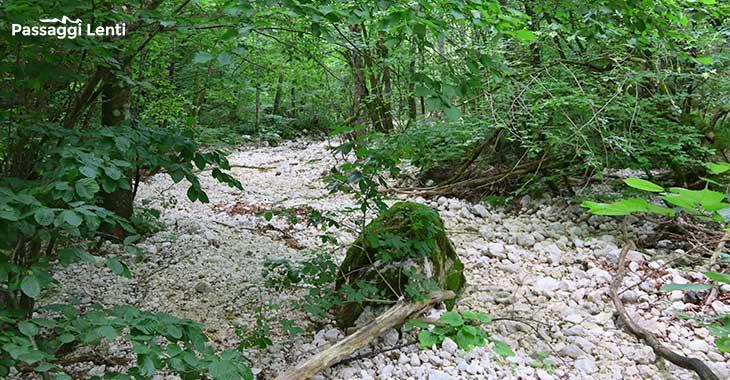 Gole di Celano, il letto del torrente