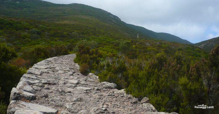 Escursioni a Capraia: cosa vedere